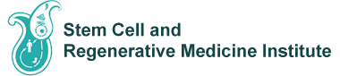 Stem Cell and Regenerative Medicine Institute